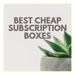 All Cheap Subscription Boxes for 2019