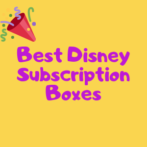 Disney Monthly Subscription Boxes
