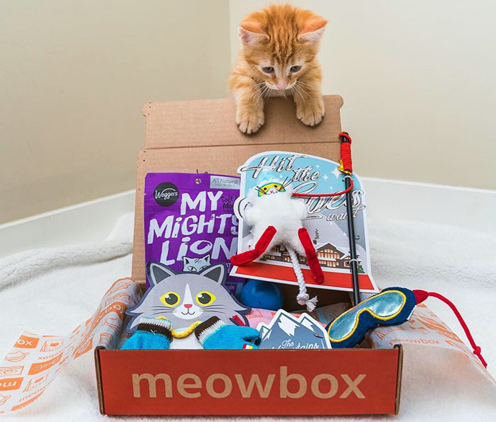 Meow box monthly subscription boxes for cats